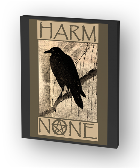 Harm None Standard T-Shirt Front