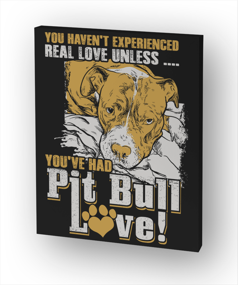 You Haven't Experienced Real Love Unless.... You've Had  Pitbull Love! Standard T-Shirt Front