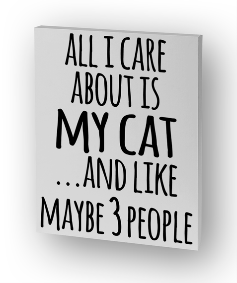 All I Care About Is My Cat And Like Maybe 3 People Standard T-Shirt Front
