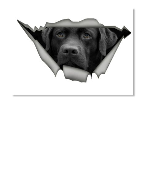 Black Labrador Sticker  White T-Shirt Front