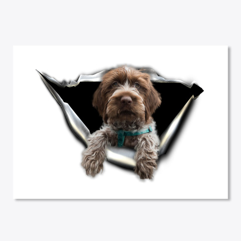 Wirehaired Pointing Griffon White T-Shirt Front