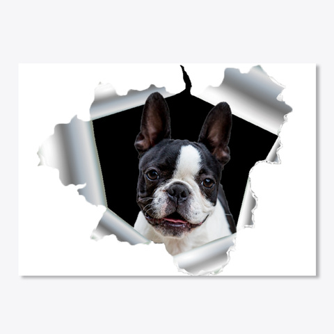 French Bulldog Sticker Donation  White T-Shirt Front