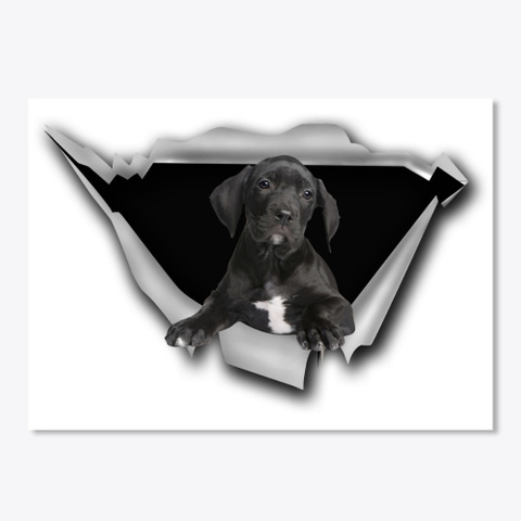 Great Dane   Torn White T-Shirt Front