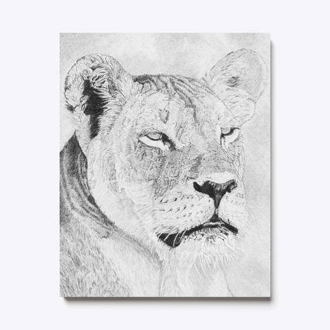 Afrigraphix   Lioness' Interested Gaze White T-Shirt Front