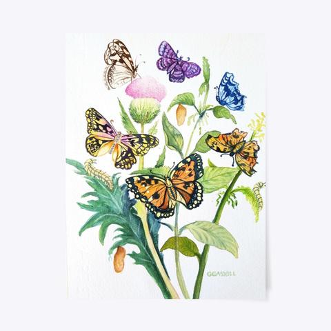 Butterfly Galore Standard T-Shirt Front