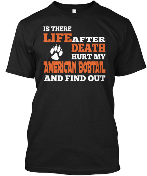 Is There Life After Death Hurt My American Bobtail And Find Out Black Kaos Front