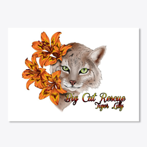 Tiger Lilly Bobcat In Bloom White T-Shirt Front