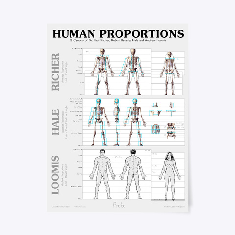 Human Proportions Poster Standard T-Shirt Front