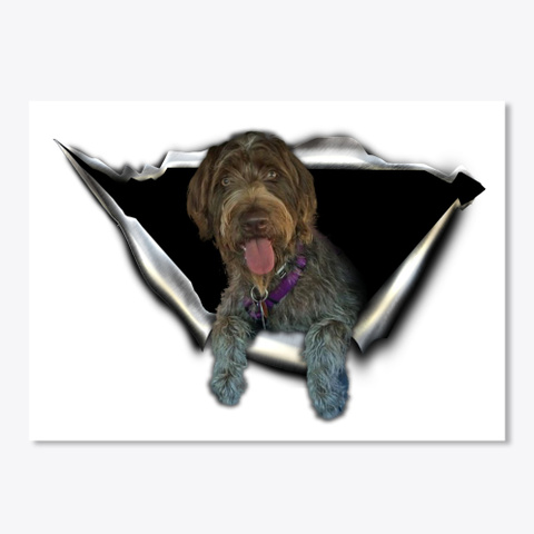 German Wirehaired Pointer White T-Shirt Front