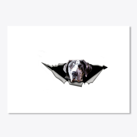 Great Dane Car Decal And Car Sticker White T-Shirt Front