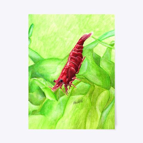 Cherry Shrimp Standard T-Shirt Front