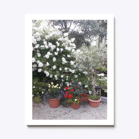 Wall Art Canvas Print Blooming Garden White T-Shirt Front