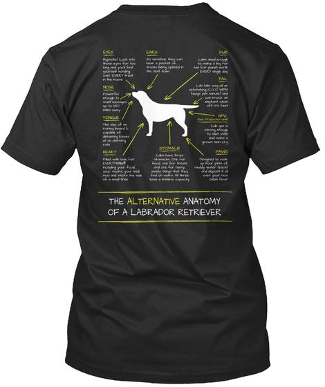 ee519813 Alternative Anatomy Of A Labrador - the alternative anatomy of a ...