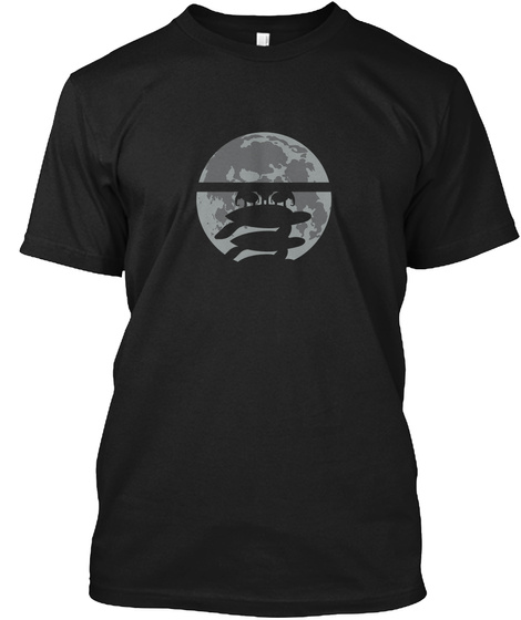 Flat Earth Eclipse 3 [Usa] #Sfsf Black T-Shirt Front