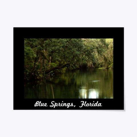 Blue Springs, Florida Nature Photography Black T-Shirt Front