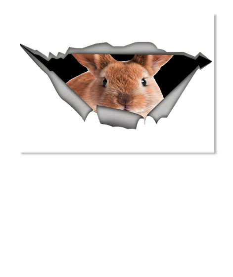 Rabbit Car Sticker  White T-Shirt Front