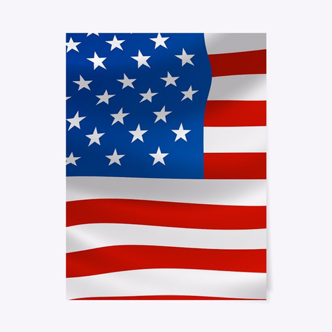 Usa Flag Canvas Print $ Posters Standard T-Shirt Front
