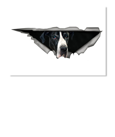 Black And White Great Dane Car Sticker White T-Shirt Front