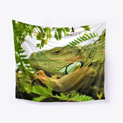 Iguana Photography Gifts Iguana Lovers Standard T-Shirt Front