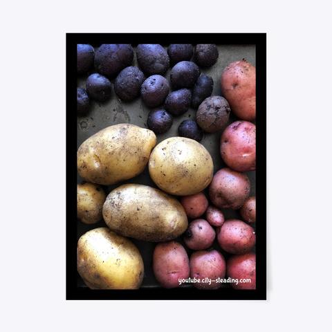 Potato Art City Steading Standard T-Shirt Front