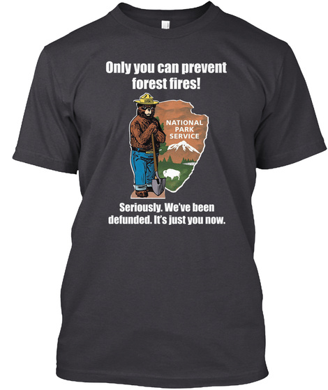 Only You Can Prevent Forest Fires Seriously We've Been Defunded It's Just You Now Charcoal Black T-Shirt Front