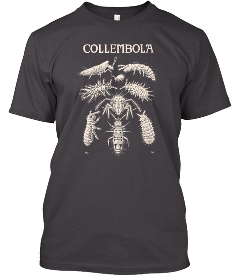 Collembola Heathered Charcoal  T-Shirt Front