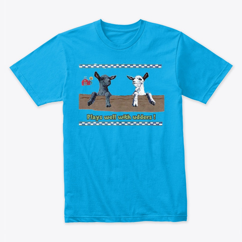 Plays Well With Others Turquoise T-Shirt Front