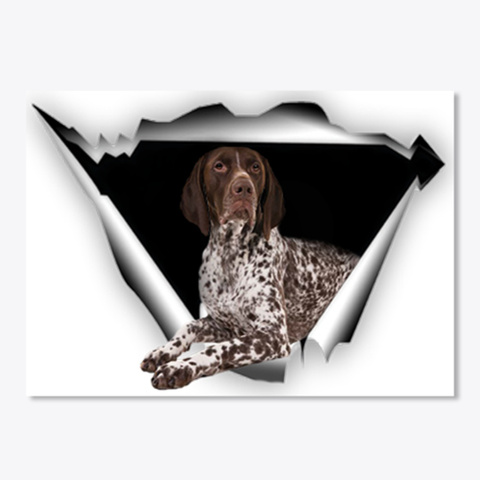 Sticker 3 D German Shorthaired Pointer White T-Shirt Front
